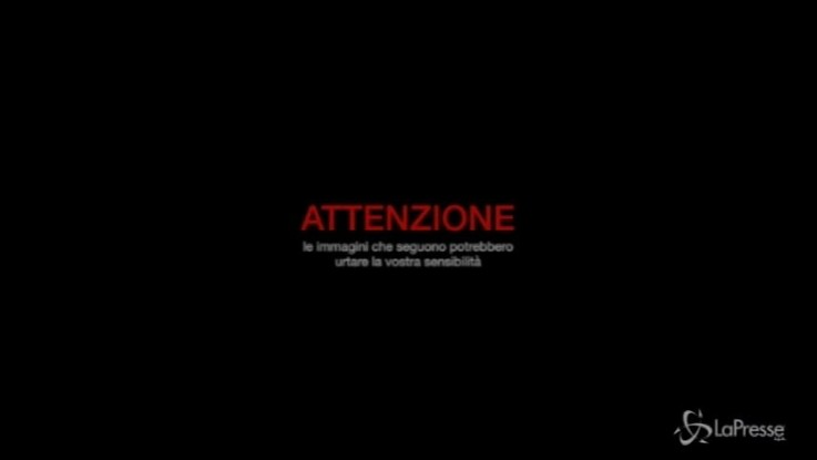 Bologna, inferno sulla A14: le immagini dell'impatto