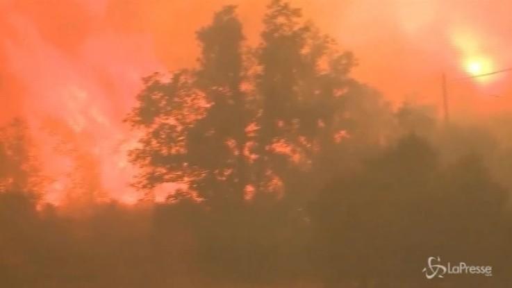 Gli incendi devastano la California: distrutti oltre mille chilometri quadrati
