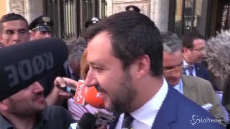 Leva obbligatoria, Trenta frena idea di Salvini