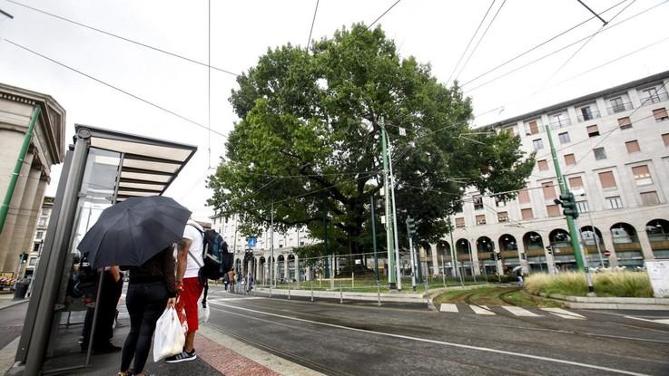 Meteo, in arrivo nuvole e piogge: calo termico al Centro-Nord
