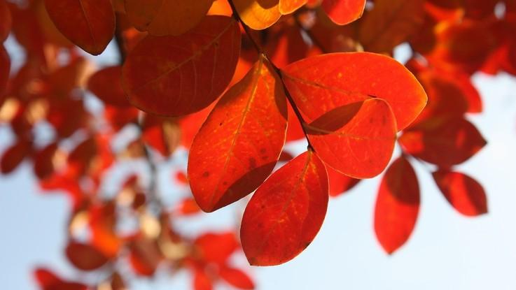 L'autunno inizia col caldo, ma poi cadono le temperature: il meteo del 23 e 24 settembre