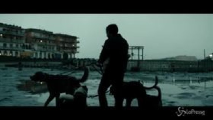 """""""Dogman"""" di Garrone candidato dell'Italia all'Oscar"""