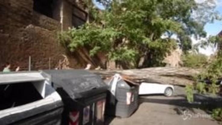 Maltempo a Roma, cade albero in via Campania