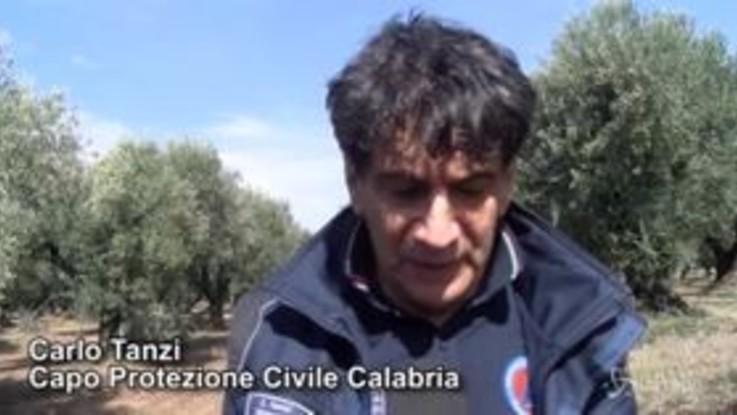 """Maltempo in Calabria, il capo della Protezione civile: """"L'allerta continua"""""""