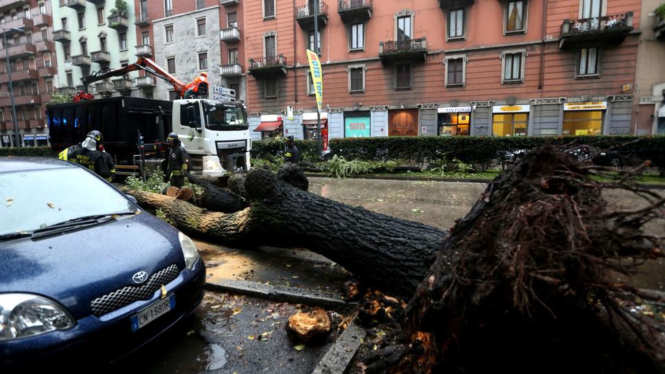 A Milano, a causa del forte vento, degli alberi sono caduti sulle auto ©