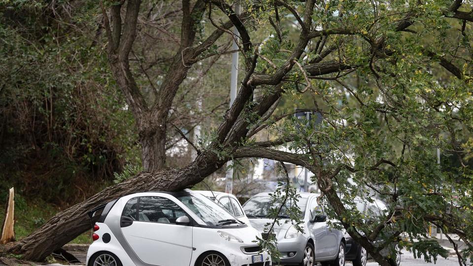 Maltempo, in via Genocchi un albero è finito sul tettino di una Smart ©
