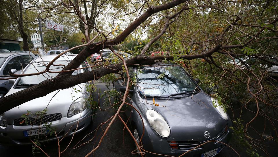Maltempo, due macchine intrappolate dagli alberi sulla circonvallazione ostinense ©