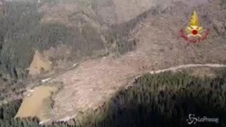 Maltempo, la strage di alberi sulle Dolomiti