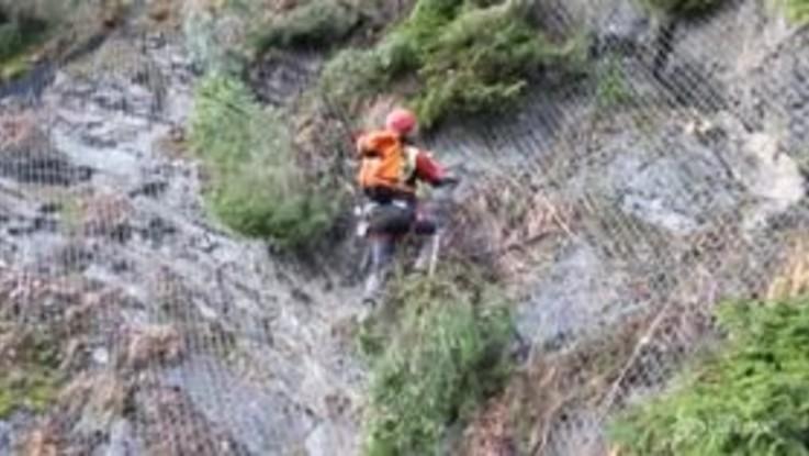 Strage di alberi a Belluno, si lavora per rimuovere i tronchi pericolanti