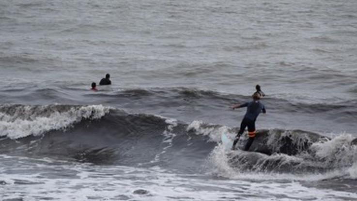 Australia, lotta tra le onde: 43enne morso da squalo lo allontana a colpi di tavola da surf