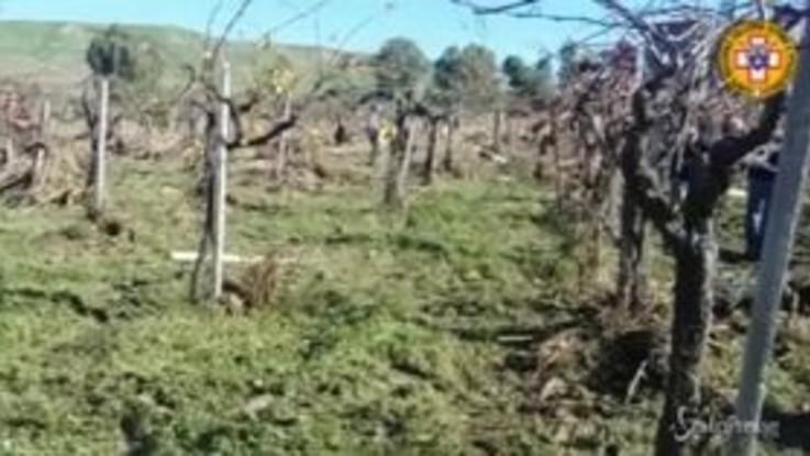 Palermo, trovato il corpo del medico scomparso durante il nubifragio