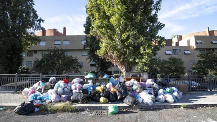 Rifiuti, Governo vuole dire addio agli inceneritori e guarda al 'modello Treviso'