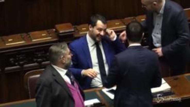 """Dl Sicurezza, fuorionda di Salvini con Fontana: """"Fuori a festeggiare con le bandierine"""""""
