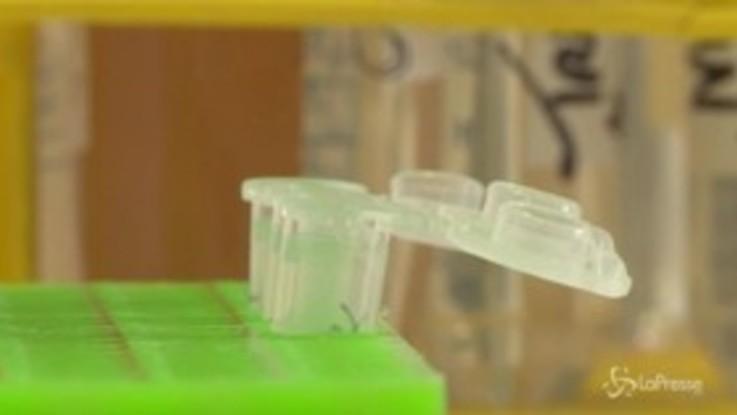 Hiv, parte la sperimentazione del vaccino pediatrico