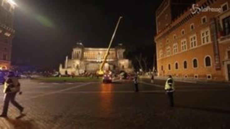 Roma, è arrivato l'erede di Spelacchio: ecco il nuovo albero di Natale in piazza Venezia