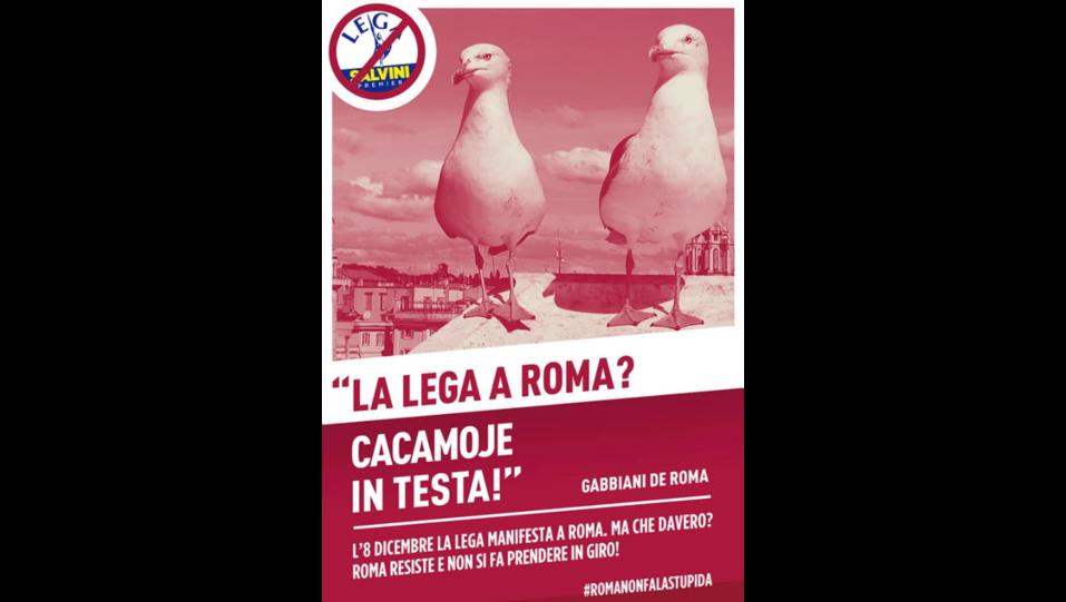 I gabbiani di Roma anti-Salvini in una locandina ©