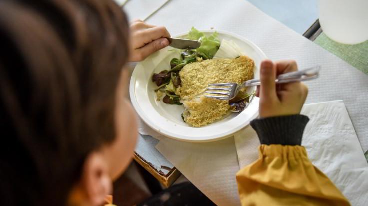Escrementi di animali, pessime condizioni igeniche e carne non italiana: ecco le sette mense scolastiche chiuse