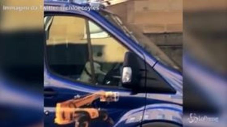 Un carlino 'al volante' di un camion suona il clacson all'impazzata