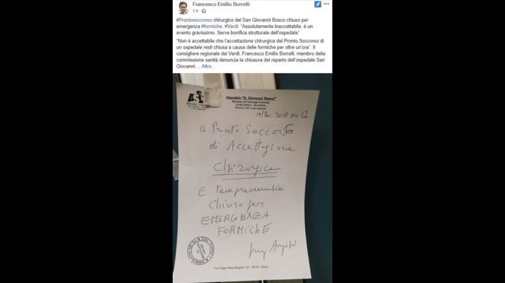 Napoli, formiche tra i medicinali all'ospedale San Giovanni Bosco: il nuovo video-denuncia di Borrelli
