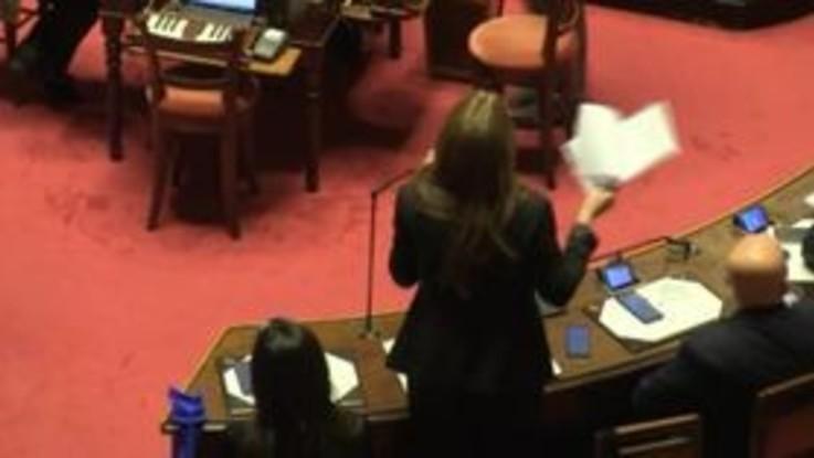 """Bagarre in Senato, Bottici (M5S): """"Senatori Pd sono delle macchiette"""""""