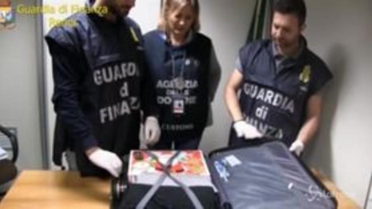 Roma, cocaina nascosta nel pacchetto regalo di Natale