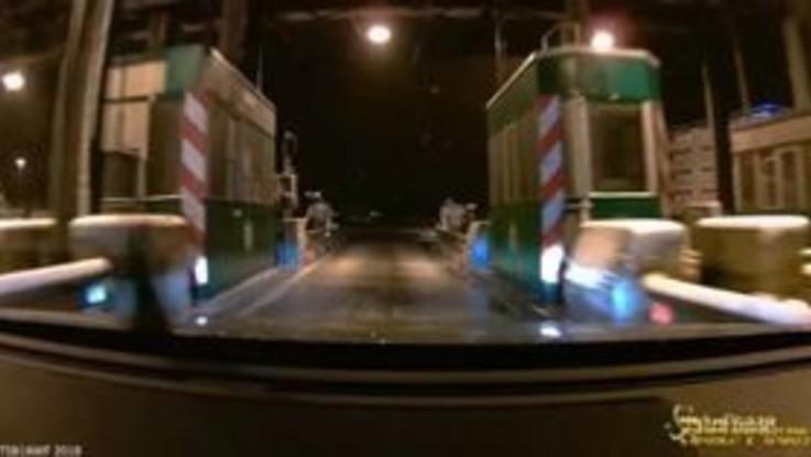 Agnelli svenuti o feriti sui camion: la videodenuncia di AnimalEquity, Awf ed Enpa