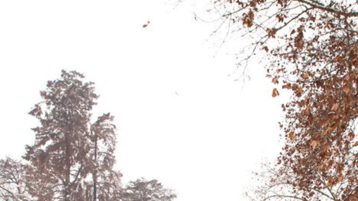 Nuvole e freddo: il meteo dell'1 e del 2 gennaio