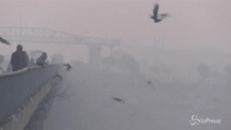 Smog in Pakistan, la città di Lahore avvolta nella nebbia