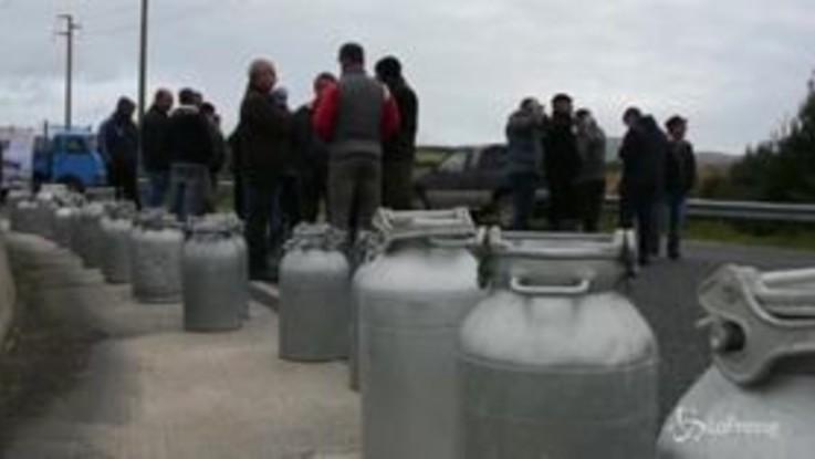 """Sardegna, pastori in protesta: """"Pochi giorni per concordare il prezzo giusto del latte"""""""