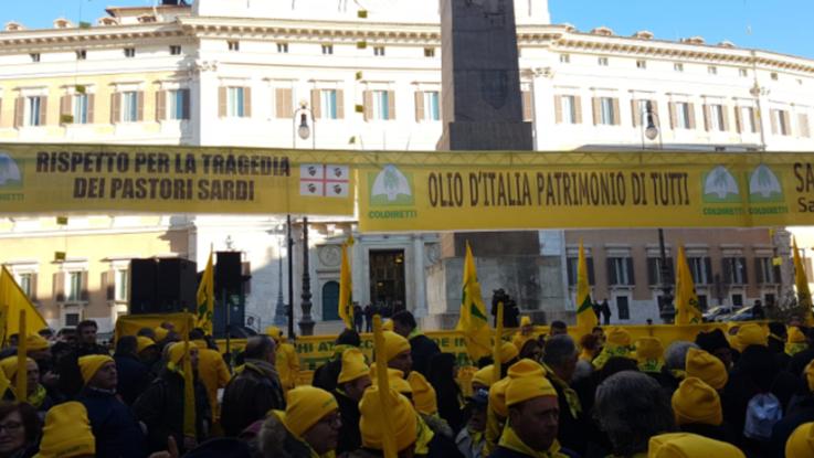 """Pastori in protesta davanti a Montecitorio. Coldiretti: """"Commissariare il Consorzio"""""""