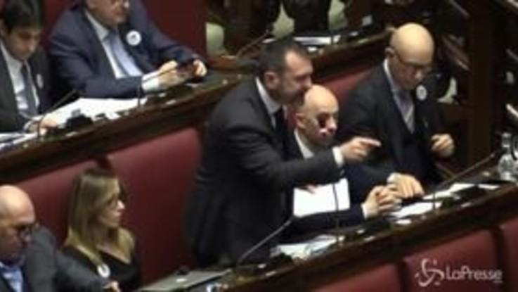 "Fratelli d'Italia sventola la bandiera del Venezuela: ""No al cerchiobottismo"""