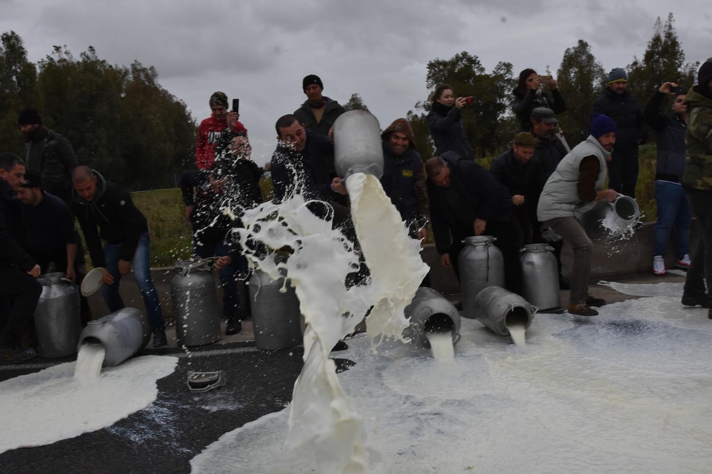 Latte, trattativa in stallo: rinvio a sabato. I pastori sardi puntano i piedi