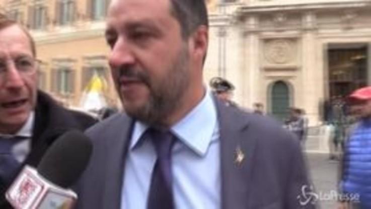 """Legittima difesa, Salvini: """"Defezione dei 5 Stelle? Sono tranquillo"""""""