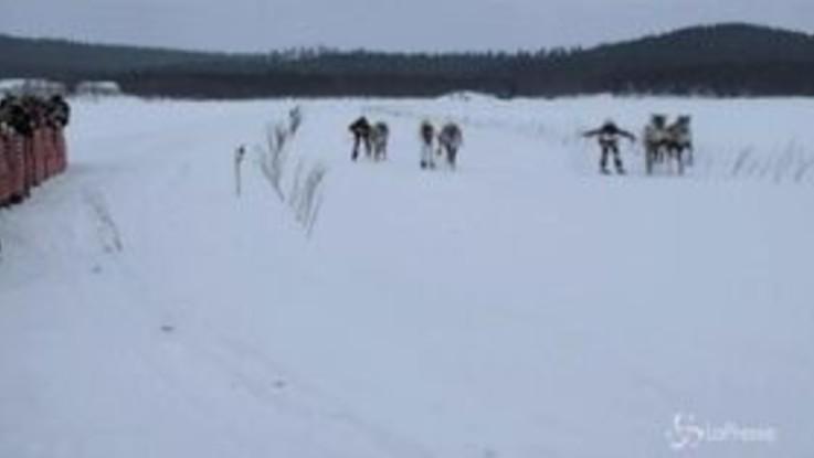 Lapponia, le renne sfrecciano nella neve: al via la 66esima edizione della gara