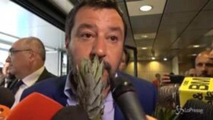 Ressa di giornalisti per Salvini: tra la selva dei microfoni spunta un ananas