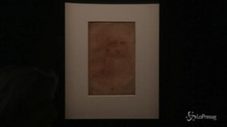 Torino, in mostra i disegni di Leonardo ai Musei Reali