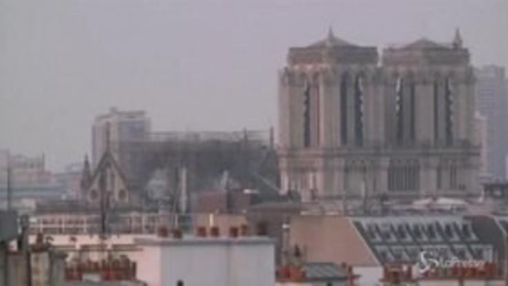 Notre-Dame, la cattedrale alle prime luci dell'alba
