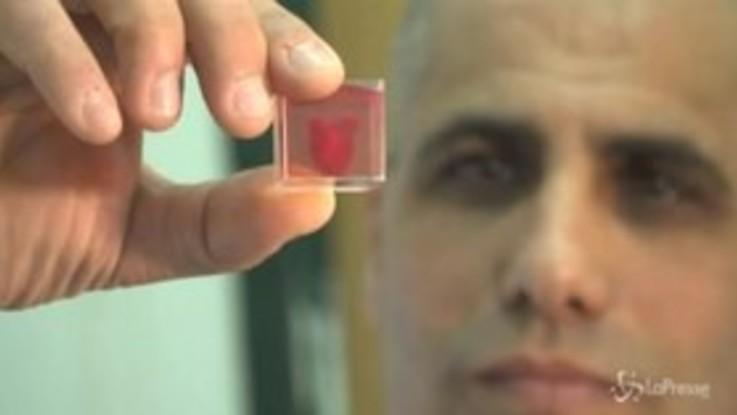 Tel Aviv, ecco il primo cuore stampato in 3d utilizzando tessuto umano