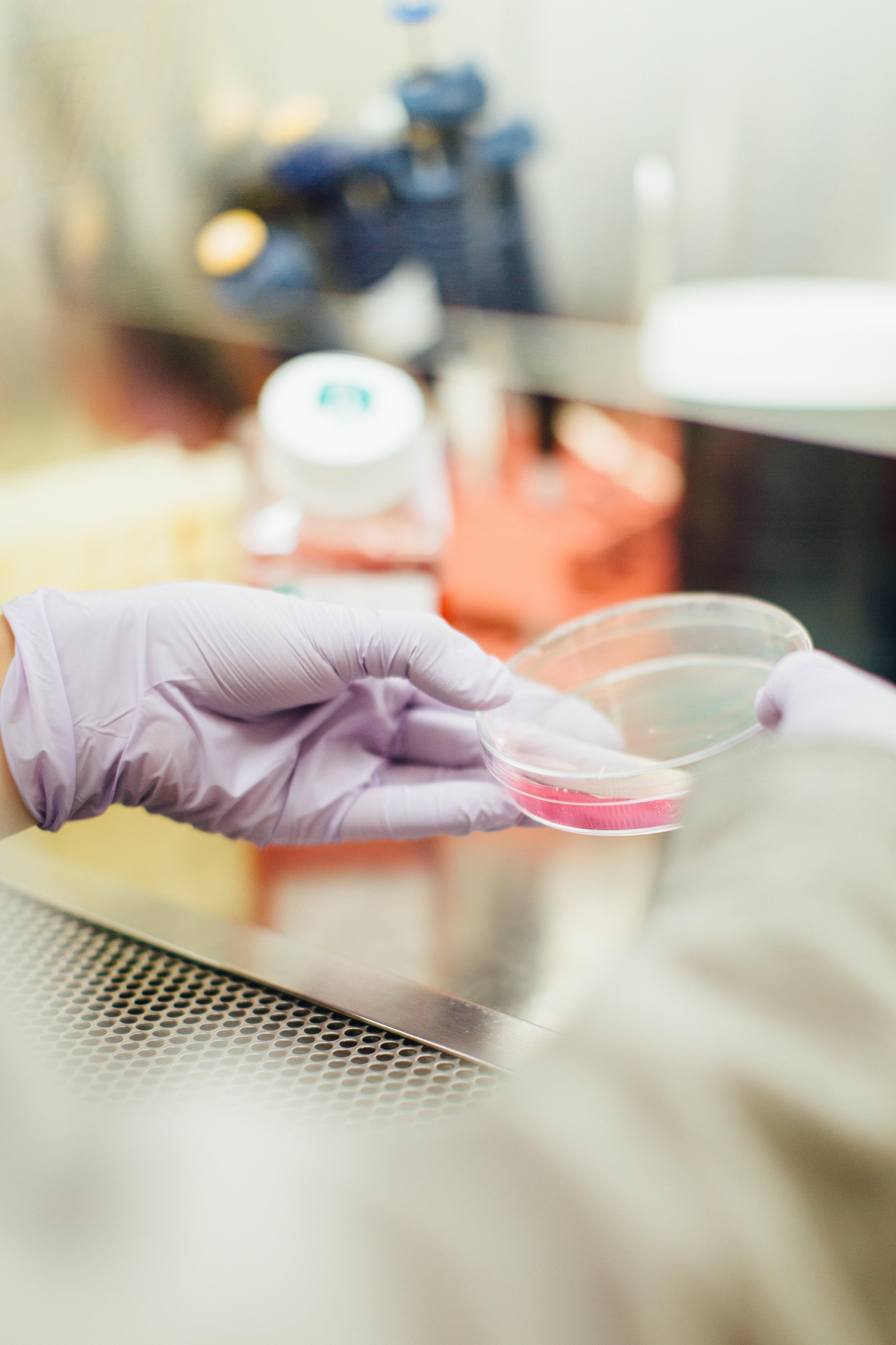 I malati di tumore sborsano 5 miliardi l'anno di tasca propria per le cure