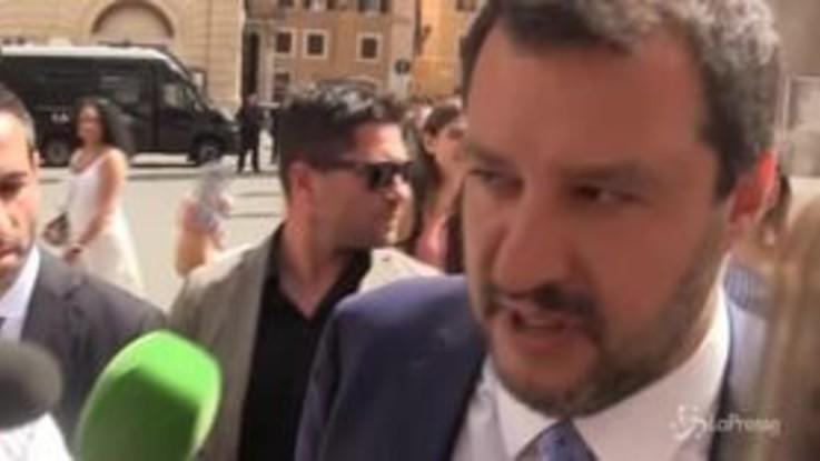 """Salvini: """"Arata? L'ho incontrato una volta sola"""""""