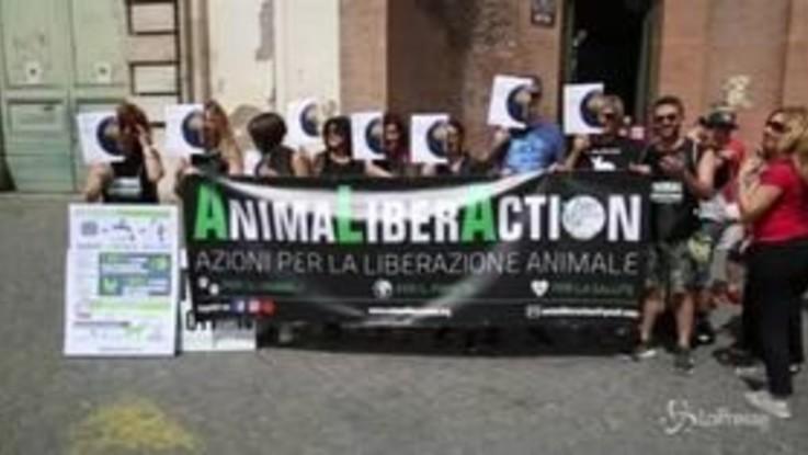 Roma, corteo ambientalista per il clima e contro gli allevamenti intensivi