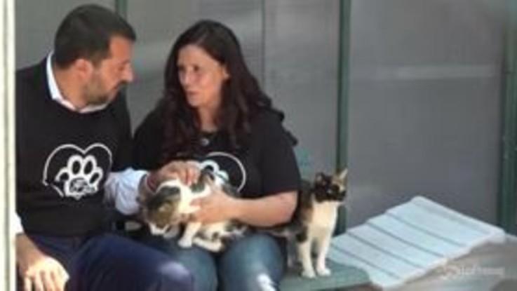 Roma, Salvini al gattile del Verano: in arrivo 1 mln di euro per contrastare maltrattamento animali