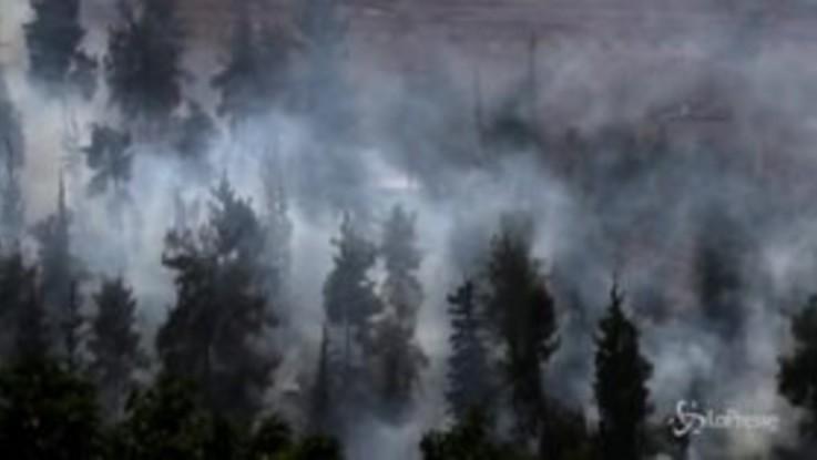 Caldo eccezionale, la foresta vicino a Gerusalemme prende fuoco