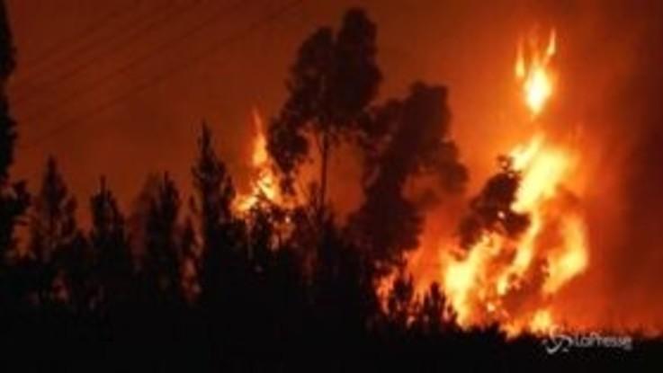 Vigili del fuoco contro le fiamme: la lotta contro gli incendi nel centro del Portogallo