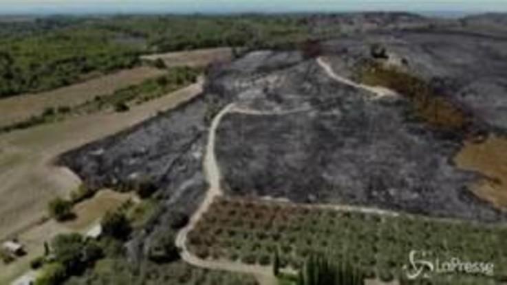 Francia, le immagini aeree della devastazione causata dagli incendi