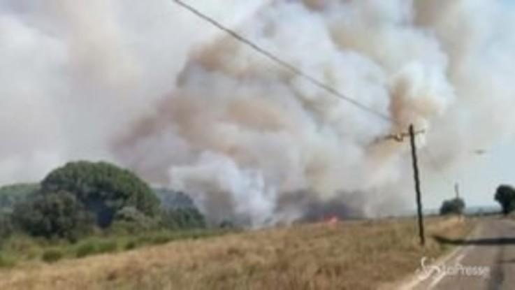 Francia, boschi e vigneti in fiamme