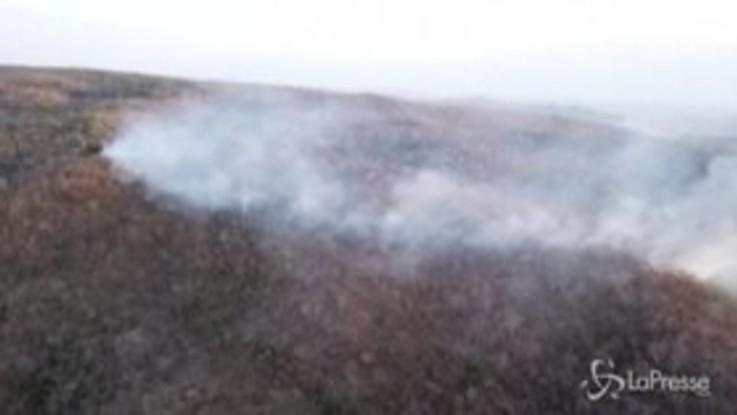 Incendi in Brasile: allarme per la Foresta Amazzonica