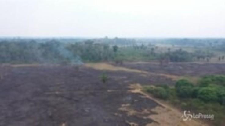 Brasile, le riprese aeree dell'Amazzonia distrutta dagli incendi