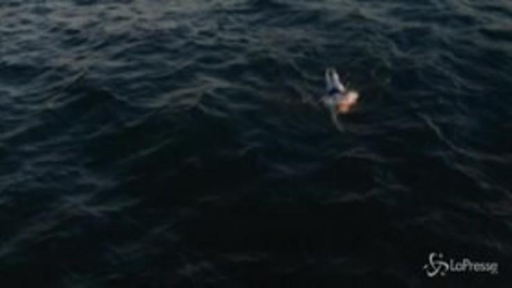 Attraversa La Manica a nuoto 4 volte consecutive senza sosta: è record