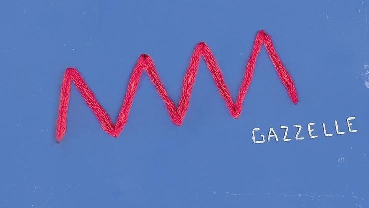 Gazzelle, esce il nuovo progetto 'Post Punk'
